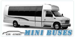 Minneapolis Mini Bus rental