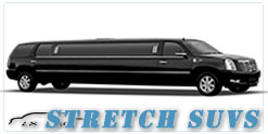 Wedding limousine in Minneapolis, MN