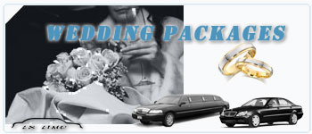 Minneapolis Wedding Limos